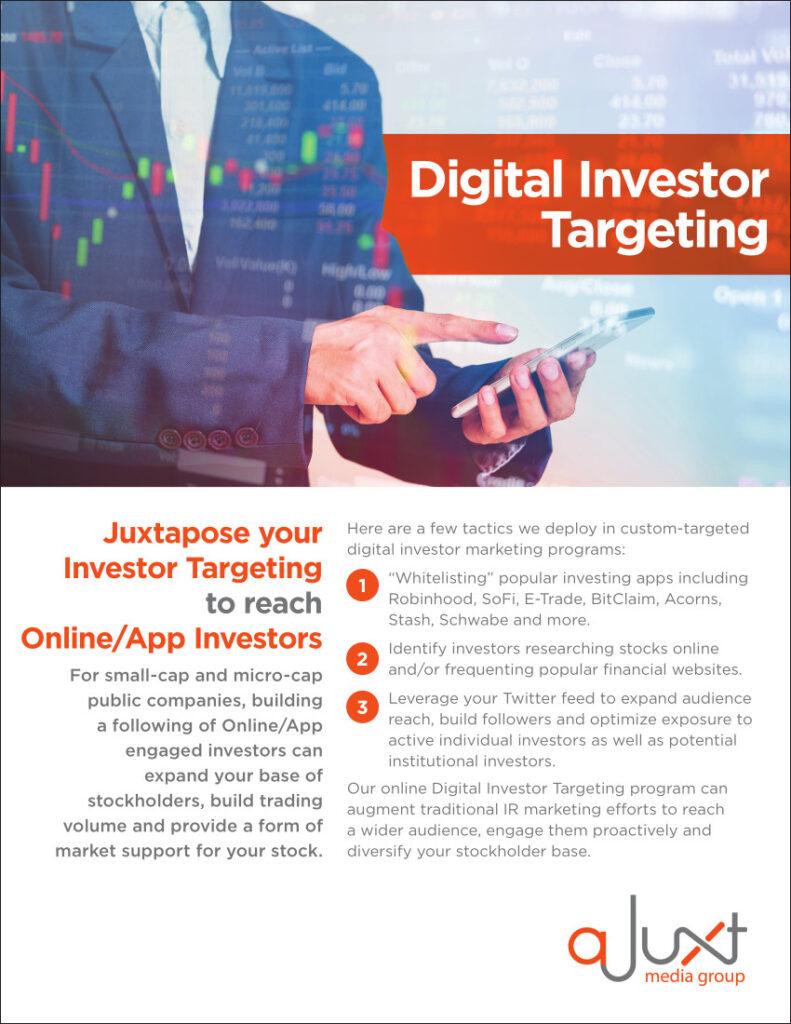 aJuxt Digital Investor Targeting Information Flyer